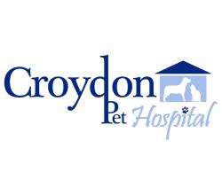 Croydon Pet Hospital